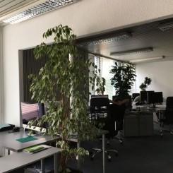 *Für Investoren* renovierungsbedürftige Büroetage in bester Lage