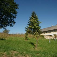 Landhaus Bauernhof Statek mit +1 Ha und AusbreitungsBaugenaehmigungen bei Adrspach in Tschechien