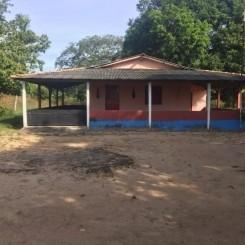 Brasilien 1'000 Ha Grundstück im Norden von Manaus