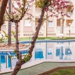 2 Zimmer-Wohnung mit Pool, Torrevieja Alicante