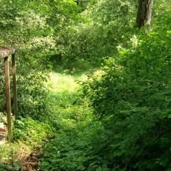 Grundstück bebaut 2055 qm einmalige Lage, direkt an der Saselbek