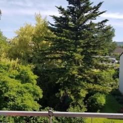 möbelierte Wohnung ab Juli zu vermieten