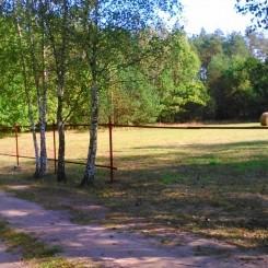 Wohnidylle direkt am Nationalpark Tucholer Heide