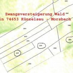 ** Zwangsversteigerung Wald in 74653 Künzuelsau - Morsbach **